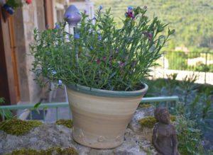 pot-pour-plante-gres