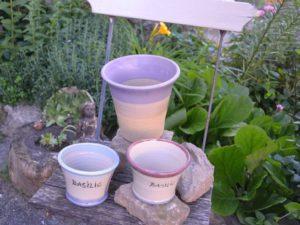 pots-pour-basilic